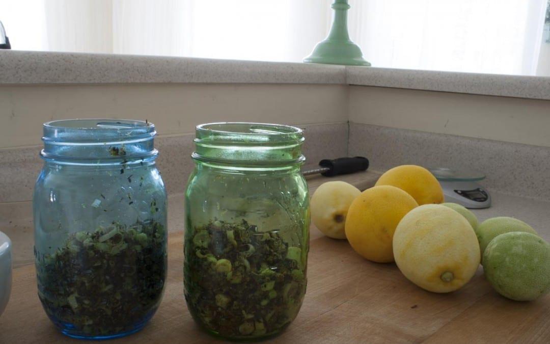 Homemade Tonic Water Recipe